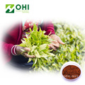 Black Tea Extract Polyphenols Powder
