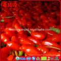 Sunburst superfoods organic dried goji berries calories in dried goji berries benefits of dried goji berries