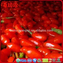 Boa Qualidade Novo Ningxia Frutas Secas Secas Goji Berry 280 grãos