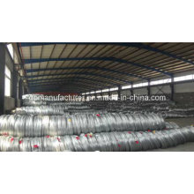 Made in China Galvanized Steel Wire with High Tension