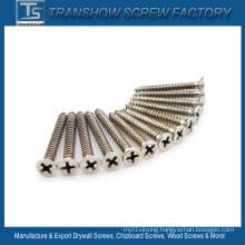 DIN7982 Stainless Steel Philips Countersunk Head Tapping Screws