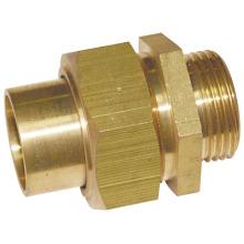 Unión de latón Acoplamiento de tubería (a 0254)