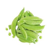 2021 New Season Fresh Good Quality And Low Price Green Sugar Snap Pea