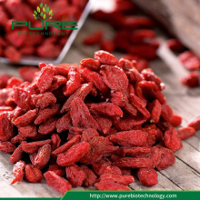 Goji Berry dried /No Sugar/No Additive/No GMO