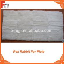Fuente de fábrica Rex Placa de piel de conejo