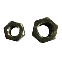 High Standard special material Fasteners Stainless Steel Nut Shard Nuts For wind industry carriage bolt and nut
