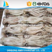 Tentacule de calmar congelé tentacule de loligo chinensis, tentacule illex tentacle.frozen tentation de calmars et tête à vendre