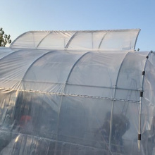 Skyplant Walk-in Green Plastic Greenhouse With Top Ventilation