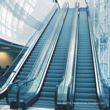 XIWEI Fashion Playground Elevator Escalator