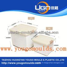 Moule en plastique de récipient moule de yougo