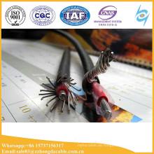 LV konzentrischer Service AL PVC-Draht-Kabel 600v