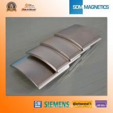 Arc Motor Magnet