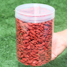 Nuovo arrivo Super Food Dried Wolfberry Goji
