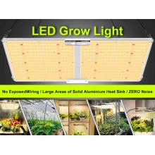 L'usine de panneau LED à spectre complet élève la lumière