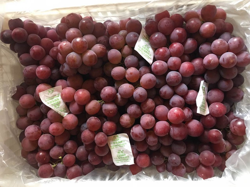 Red Grapes 4