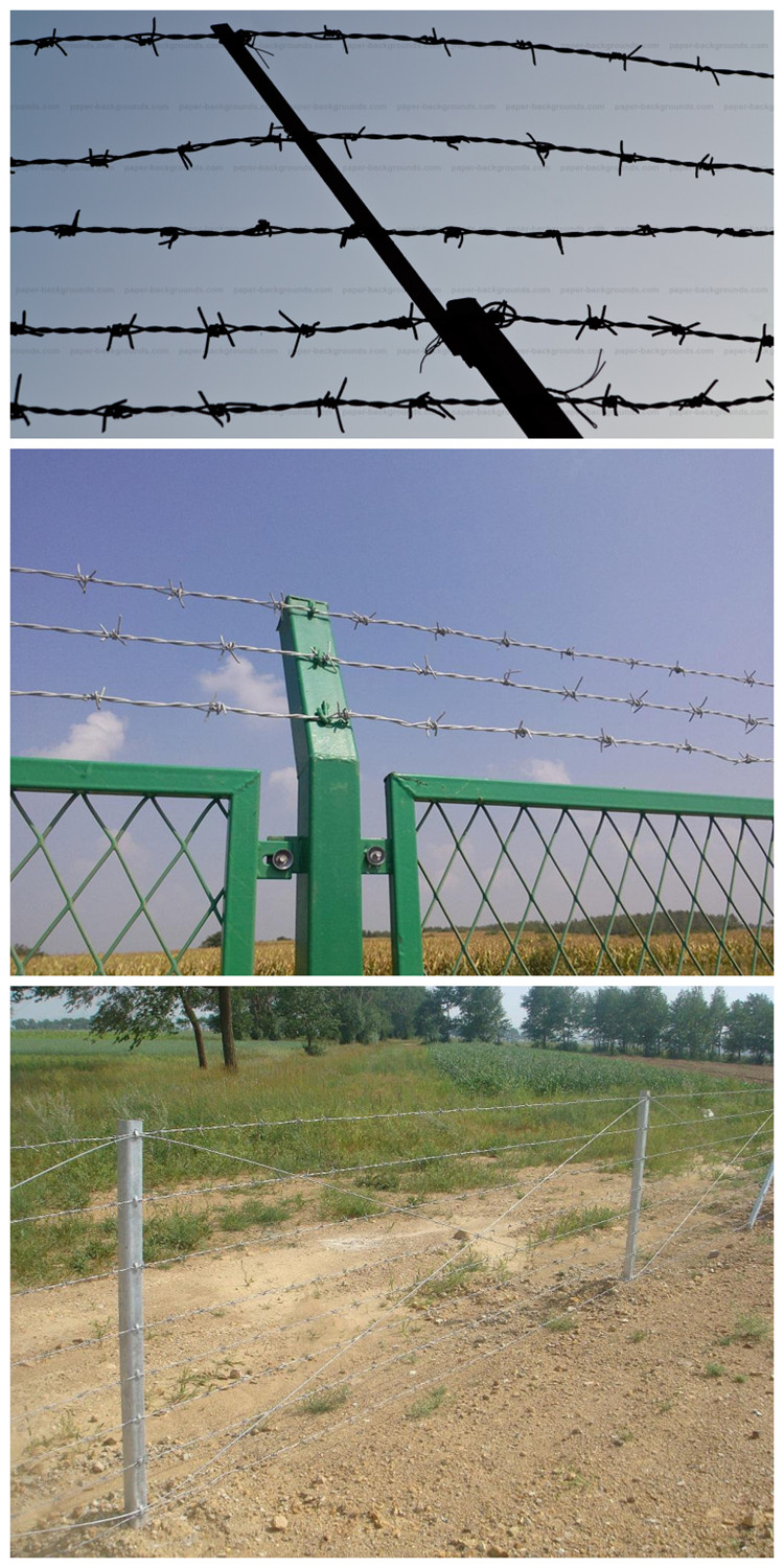 Barbed wire (2)