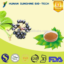 SunShine 0.8% Eleutherisides Siberian Ginseng Extract for Anti-fatigue & Anti-aging