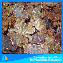 fresh frozen mud crab price for sale with superior service
