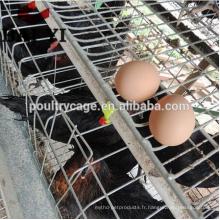 (2017 Haute Qualité, Meilleure Promotion) galinheiro para galinhas poedeiras