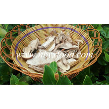 Top Quality Dried Fresh Wild Porcini Mushrooms