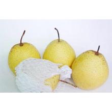 Proporcione pera fresca de nieve regular
