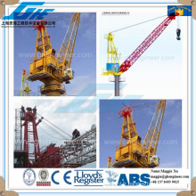 Grue portique marine hydraulique pedestale hydraulique