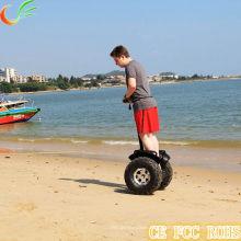Wholesale China Bikes with 2 Wheel Electric Vehicle