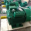220V 1HP YC Single Phase AC Electric Motor