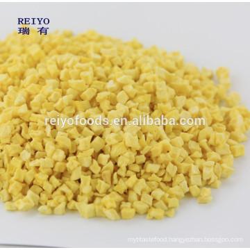 new crop dried Fuji apple dices Shandong origin