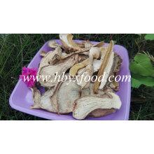 Dried Organic Porcini Mushrooms From Yunnan