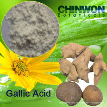 16. Antioxidantien Gallussäure 99%
