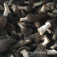 Dried Morchella for sale