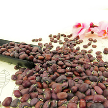 ALIBABA USED ECLUSIVELY Red cowpea beans (GF4)