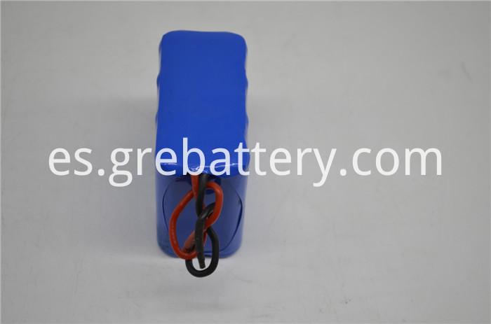 portable 12V battery pack
