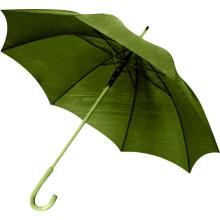 Cadre vert ouvert et manette du parapluie droit (BD-64)