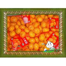Fresco, bebê, laranja, bebê, tangerina, laranja