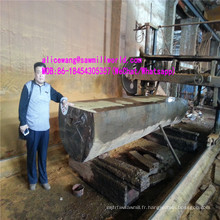 Scie électrique horizontale de scie à ruban de scie à bois pour la coupe en bois dur