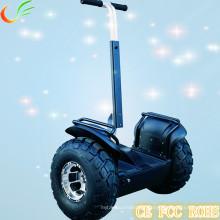 Self Balance 2 Wheel Folding E Scooter
