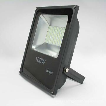 Светодиодный прожектор Lfl1210 100W