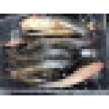 Gefrorene Katzenfische Ganze Runde / Clarius Fuscus