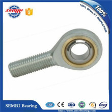 Universal Joint Bearing (ge20ds) Ball Bearing in China