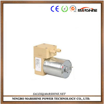 Food grade electric vacuum diaphragm water pump