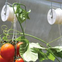 Tomatoes Trellising Tomato Roller Hook For Planting Support