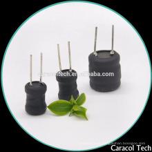 DR1013 Power Inductor com tubo UL para o áudio do carro