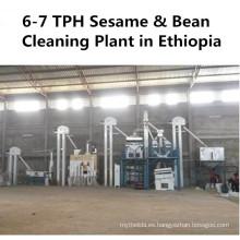 Lentejas Planta de limpieza de semillas de granos de soja de sésamo de garbanzo (Maquinaria agrícola)