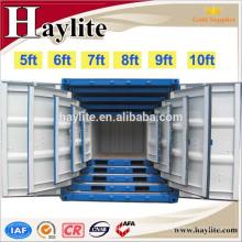 Boîte de récipient de garage de récipient de récipient de 20ft d'Haylite à vendre