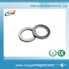 China Manufacturer Wholesale NdFeB Ring Magnet