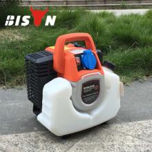 BISON CHINA Taizhou Neue Produkte auf China Market Generator Inverter 1000w