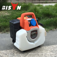 BISON CHINA Taizhou New Products On China Market Generator Inverter 1000w