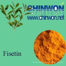 Botanical Memory Improve Fisetin 98%